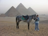 Egypt2006 27