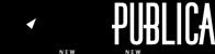 newpublica-logo-small