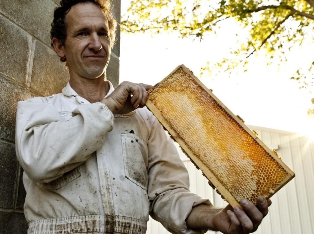Brian Fredericksen Bee Man